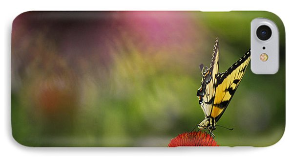 Butterfly And Cone Flower IPhone Case by Elsa Marie Santoro