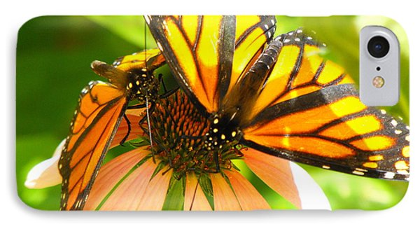 Butterfly And Friend IPhone Case by Erick Schmidt
