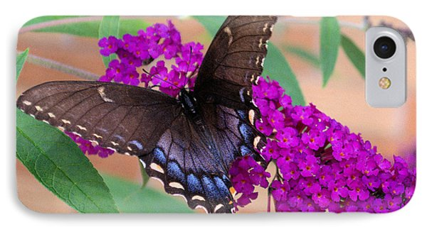 Butterfly And Friend IPhone Case by Luther Fine Art