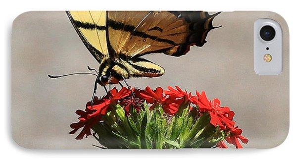 Butterfly And Maltese Cross 1 IPhone Case by Aaron Aldrich