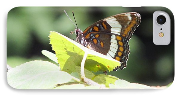 IPhone Case featuring the photograph Butterfly And Shadow by Gene Cyr