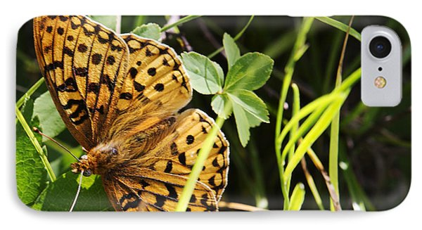 IPhone Case featuring the photograph Butterfly At Signal Mountain by Belinda Greb