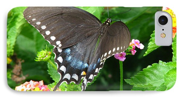 Butterfly Ballot IPhone Case by Greg Patzer