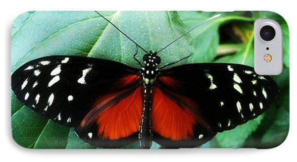 Butterfly Beauty Phone Case by Beril Sirmacek
