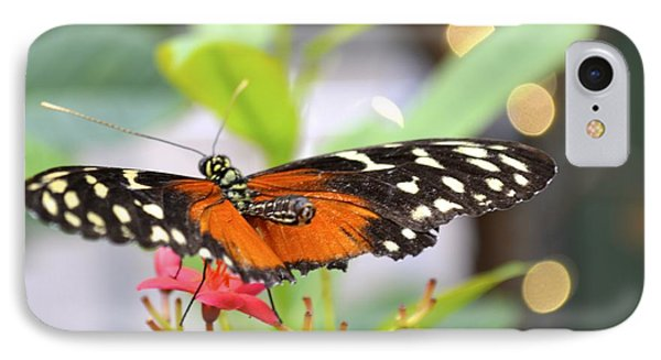 IPhone Case featuring the photograph Butterfly Beauty by Carla Carson