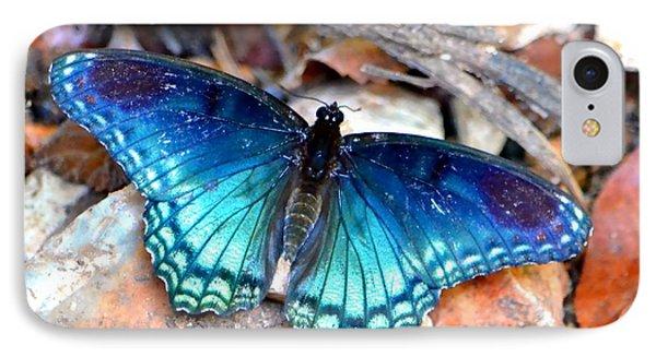 Butterfly Blue  IPhone Case by Deena Stoddard