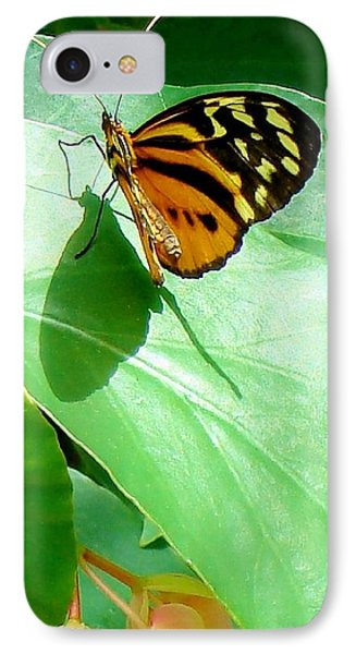 IPhone Case featuring the photograph Butterfly Chasing Shadow by Janette Boyd
