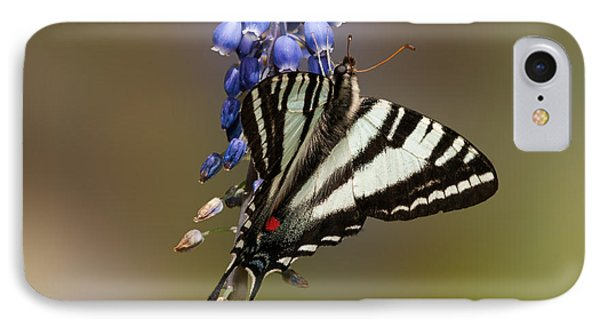 Butterfly Delight IPhone Case