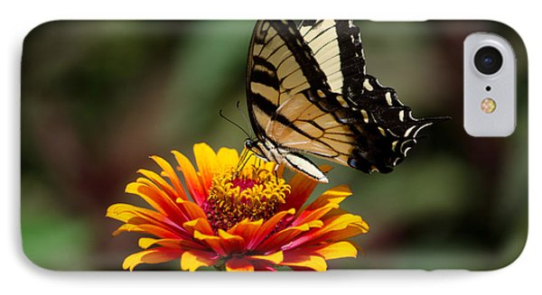 Butterfly Delight Phone Case by Nancy Edwards