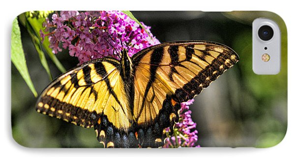 Butterfly - Eastern Tiger Swallowtail IPhone Case
