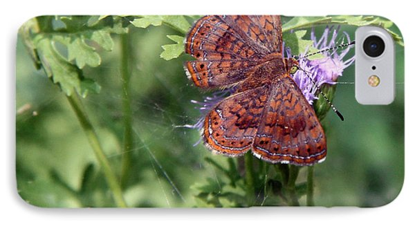 IPhone Case featuring the photograph Butterfly by Elaine Malott