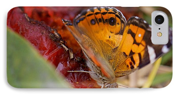 IPhone Case featuring the photograph Butterfly by Erika Weber