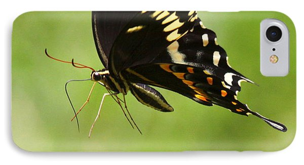 IPhone Case featuring the photograph Butterfly Flight by Myrna Bradshaw