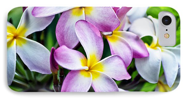 IPhone Case featuring the photograph Butterfly Flowers by Thomas Woolworth