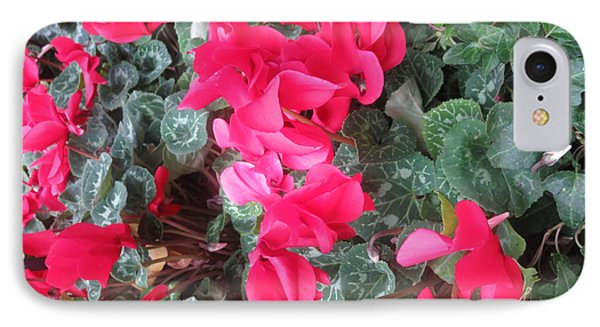 IPhone Case featuring the photograph Butterfly Garden Red Exotic Flowers Las Vegas by Navin Joshi