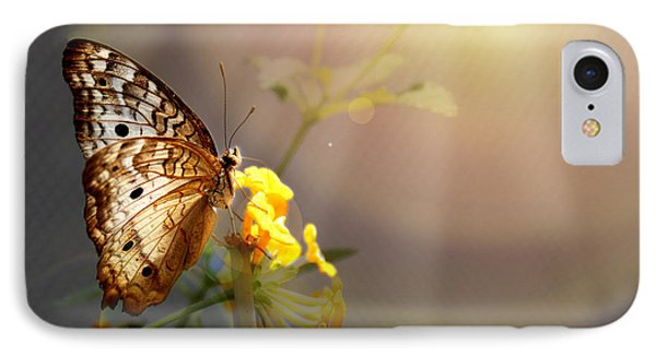 Butterfly Glow IPhone Case by Judy Vincent