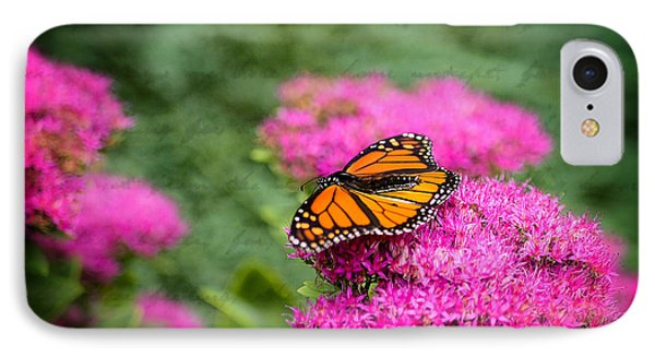 IPhone Case featuring the photograph Butterfly In Bloom by Mary Timman