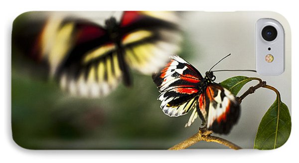 Butterfly In Flight IPhone Case by Bradley R Youngberg