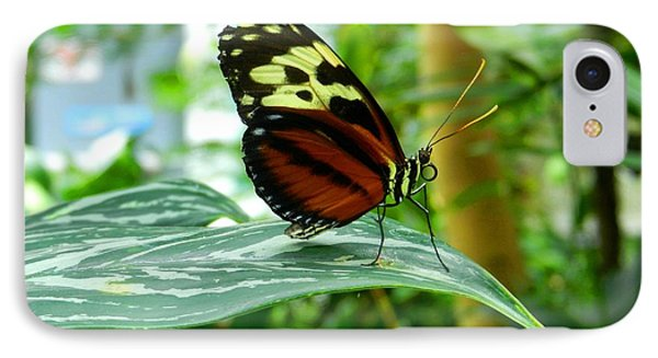 IPhone Case featuring the photograph Butterfly In Profile by Karen Molenaar Terrell