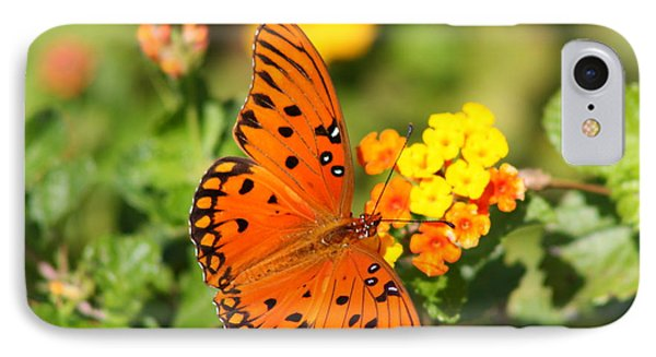 Butterfly In The Glades - Gulf Fritillary IPhone Case by Christiane Schulze Art And Photography