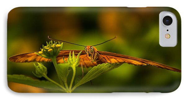 Butterfly IPhone Case by Jay Stockhaus