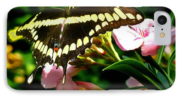 Butterfly IPhone Case by Kristine Merc