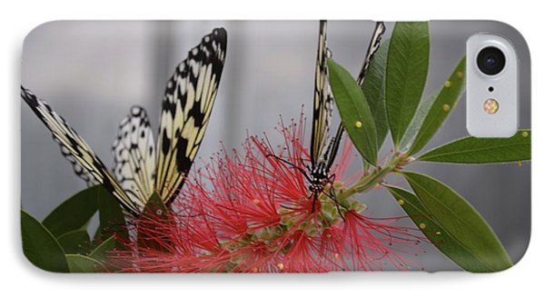 IPhone Case featuring the photograph Butterfly Love by Carla Carson