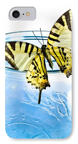 Butterfly On A Blue Jar IPhone Case