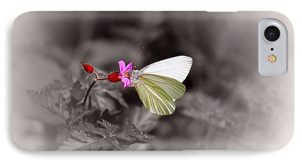 IPhone Case featuring the photograph Butterfly On A Pink Flower by Tracie Kaska
