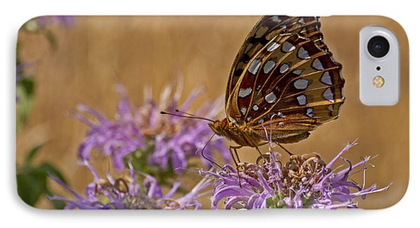Butterfly On Bee Balm IPhone Case by Shelly Gunderson