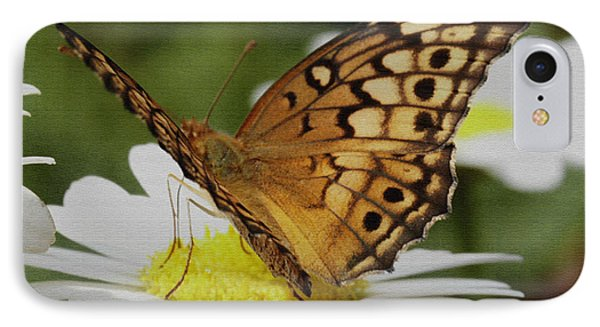 IPhone Case featuring the photograph Butterfly On Daisy by James C Thomas