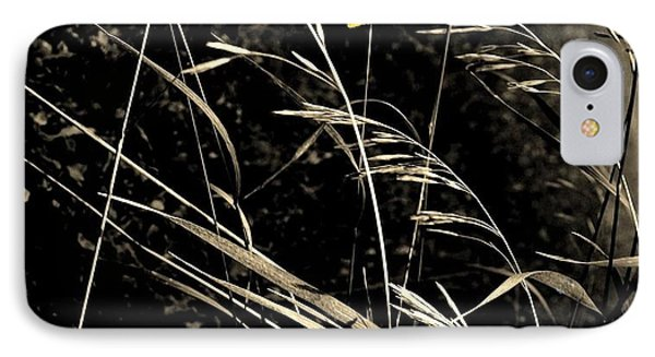 Butterfly On Grasses IPhone Case by Marsha Heiken
