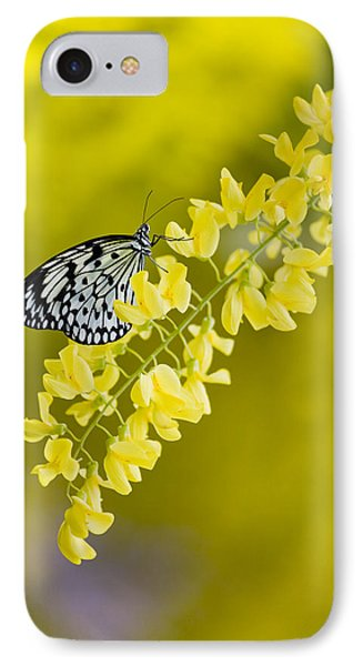 Butterfly On Laburnum IPhone Case
