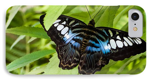 IPhone Case featuring the photograph Butterfly On Leaf   by Lars Lentz