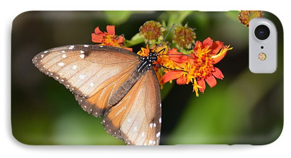 Butterfly On Mexican Flame IPhone Case by Debra Martz