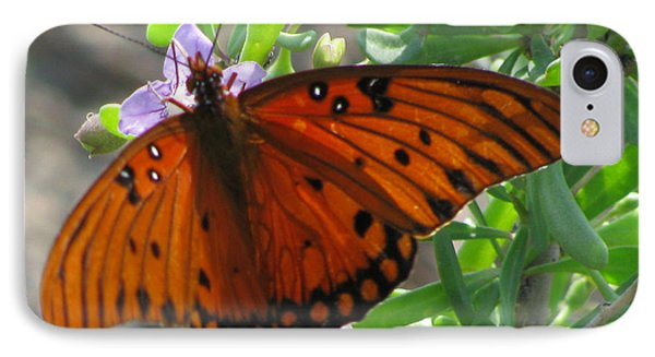 IPhone Case featuring the photograph Butterfly On The Beach by Jimmie Bartlett
