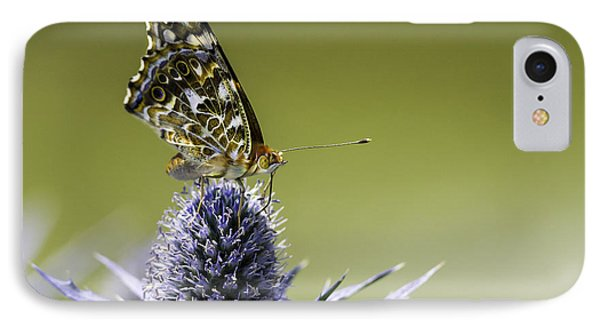IPhone Case featuring the photograph Butterfly On Thistle by Peter v Quenter