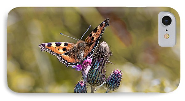 Butterfly On Tistle Sep IPhone Case
