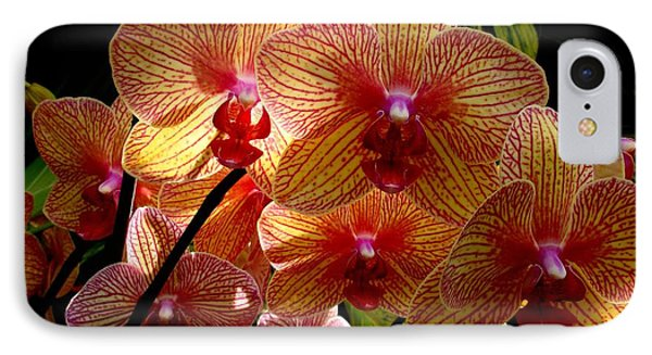 IPhone Case featuring the photograph Butterfly Orchids by Rodney Lee Williams
