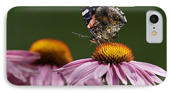 IPhone Case featuring the photograph Butterfly Red Admiral On Echinacea by Peter v Quenter