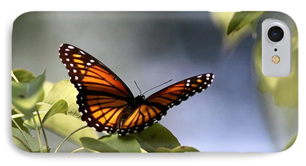 Butterfly -  Soaking Up The Sun IPhone Case by Travis Truelove