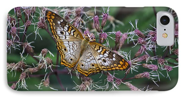 IPhone Case featuring the photograph Butterfly Soft Landing by Thomas Woolworth