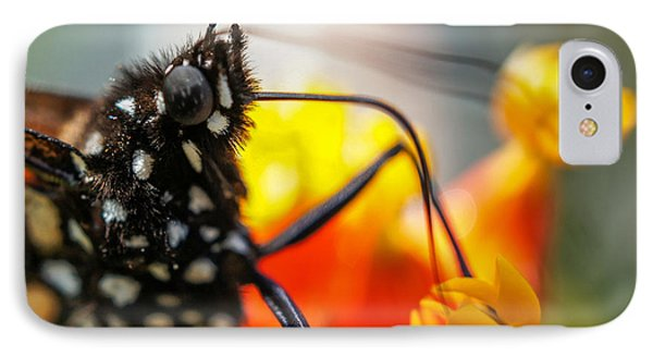 Butterfly Tongue Squared IPhone Case by TK Goforth