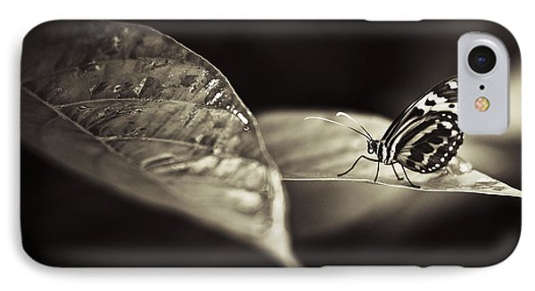 Butterfly Warm Tone IPhone Case by Bradley R Youngberg