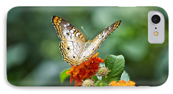 Butterfly Wings Of Sun 2 Phone Case by Thomas Woolworth