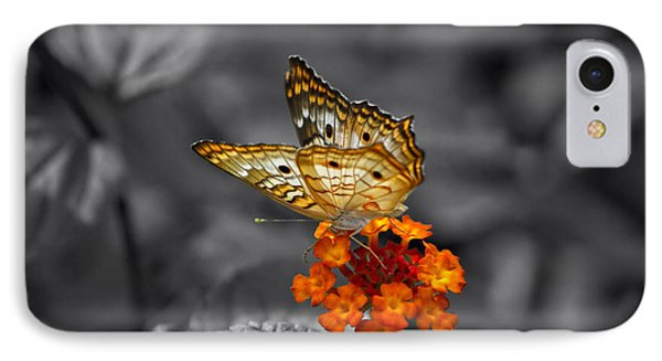 Butterfly Wings Of Sun Light Selective Coloring Black And White Digital Art IPhone Case by Thomas Woolworth