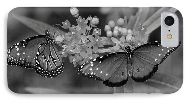 Butterflys IPhone Case by Joseph G Holland