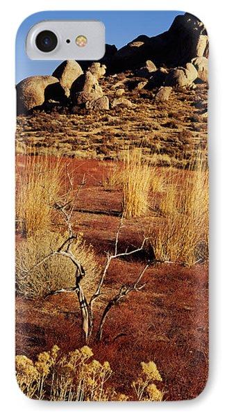 Buttermilks - Red Brush IPhone Case