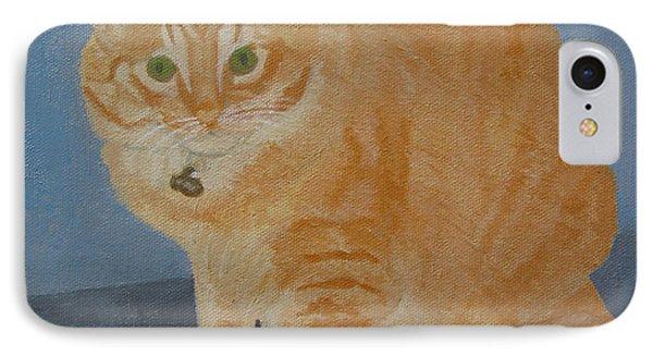 Butterscotch The Cat IPhone Case by Mini Arora