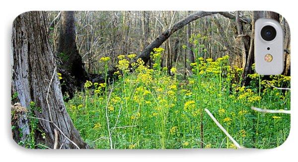 Butterweed Florida Wildflower Phone Case by Debra Forand